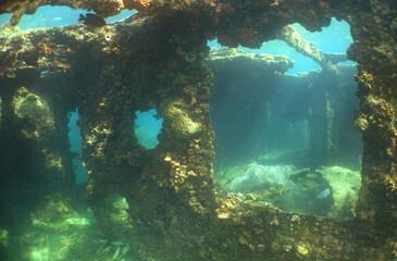 underwater ship wreck long island caribbean sea Venezuela
