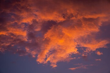 Tuinposter Bordeaux Clouds in the sky painted orange during sunset
