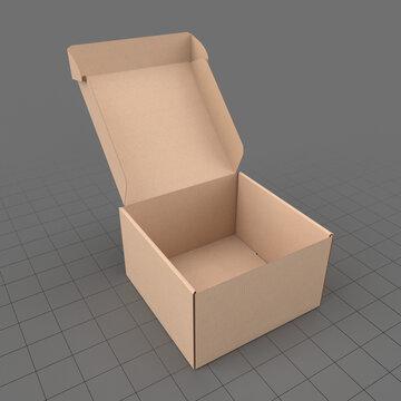 Open corrugated box 1