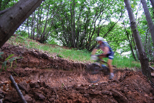 mountain bike athlete who follows a dirt path in the middle of the woods