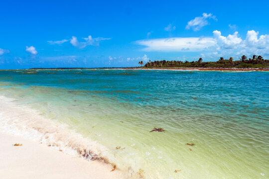 White sand beach at Sian Ka'an Biosphere Reserve, Quintana Roo / Mexico