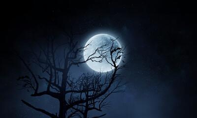 Fototapete - Spooky night image . Mixed media