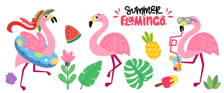 Set of cartoon pink flamingos. Collection of tropical birds. Summer vector illustration with funny animals for children's books, print, fabric, poster, postcard.