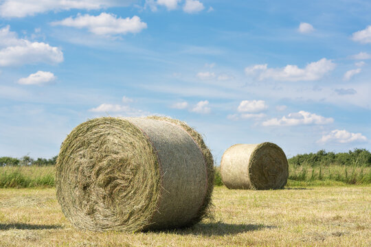 Hay Rolls, Agriculture, Germany