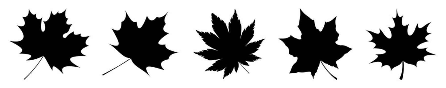 Silhouettes leaf maple icon, set. Vector, illustration