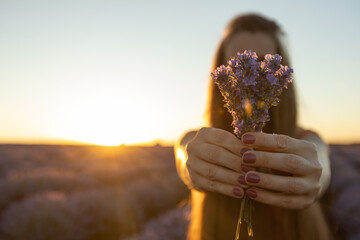 Wall Murals Deep brown Girl with long hair holds a lavender bouquet in blooming blossoming beautiful landscape of violet purple lavender field with summer sunset and orange sky, Selective focus. Beauty concept.