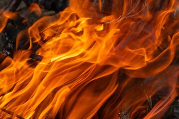 Photo sur Aluminium Rouge traffic Fire