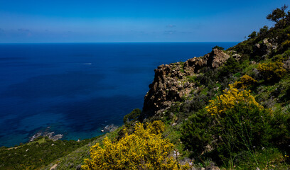 Green mountainous coast of the Mediterranean Sea on the Akamas Peninsula in the northwest of the island of Cyprus.