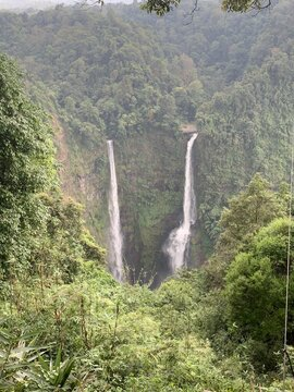 Cascade Tad Fane dans la jungle, plateau des Bolovens, Laos