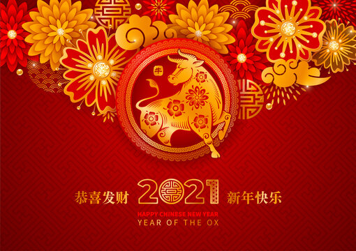 Chinese New Year 2021, year of the Ox vector design. Paper cut Ox, flowers, clouds in red and gold colors on background with traditional pattern. Chinese characters mean Happy New Year, Ox, Congrats