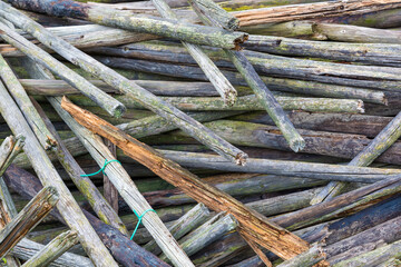 Background of old wooden stakes with green deposits
