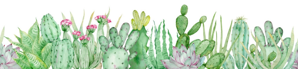 Fototapeta Watercolor seamless border of green cactuses. Endless header with tropical plants and pink flowers. obraz