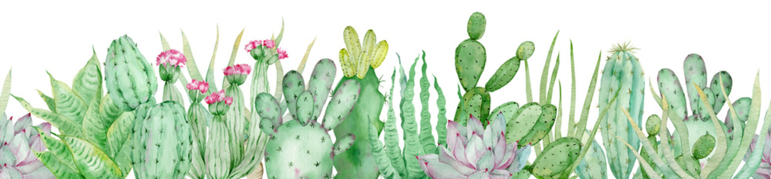 Watercolor seamless border of green cactuses. Endless header with tropical plants and pink flowers.