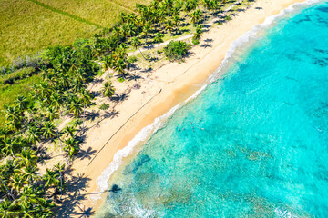 Aerial drone view of beautiful wild caribbean tropical Macao beach with palms. Dominican Republic. Vacation background.