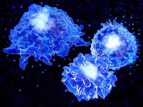 Immune cells: macrophage, T-cell and APC