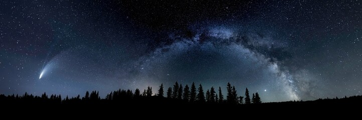 Night sky with the Milky Way and comet Neowise looking like the Christmas Star and a silhouette of pine trees along the horizon.