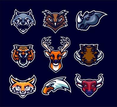 animal premium mascot logo template collection