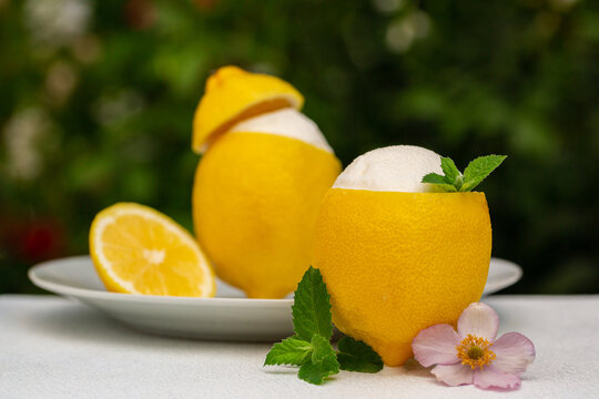 Homemade italian Sorbetto al limone or  Lemon sorbet. Decorated with mint and a flower.