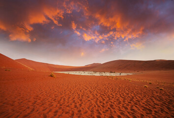 Photo sur Plexiglas Marron Namib