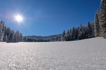 Glittering fields of fresh snow
