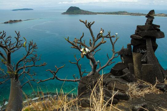 Pachypodium et point de vue depuis l'île d'Ankarea, archipel Mitsio - Madagascar
