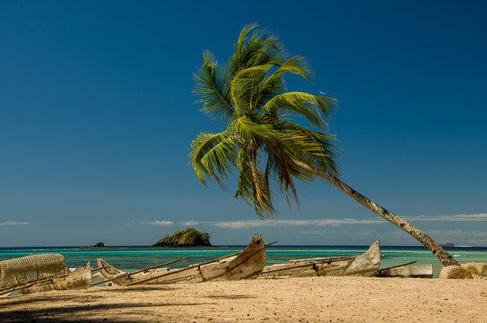Pirogues et cocotier sur la plage de la baie d'Andilana, Nosy Be - Madagascar