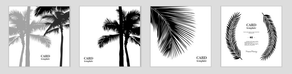 Black and white postcard templates. Vector illustration with the image of palm trees and leaves. Logo or business card or website design. As a postcard or sticker