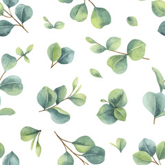 Watercolor vector hand painted seamless pattern with green eucalyptus leaves.
