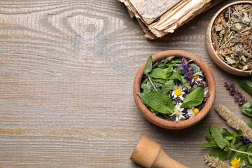 Flat lay composition with mortar and different healing  herbs on wooden table, space for text