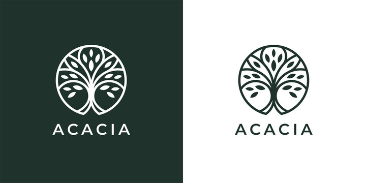 Circle tree logo icon template design. Abstract round garden plant natural line symbol. Green branch with leaves business sign. Vector illustration.