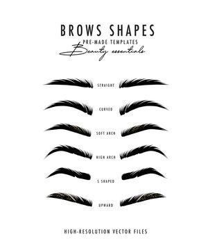 Brow bar poster, microblading eyebrows shapes realistic vector art. Beauty salon drawing, makeup artsit. Henna brows shapes poster, natural hair drawing in vector