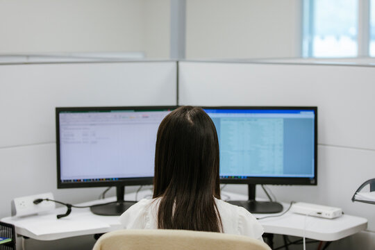 Young Chinese using computer in office