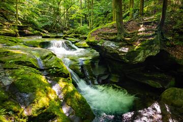 Beautiful rocky sundown forest river cascades summer day Wall mural