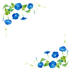 A vector frame of morning glory (asagao) flowers