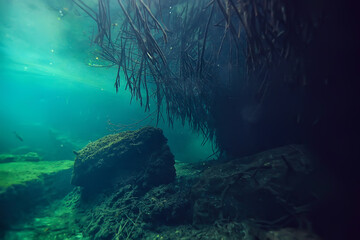 Foto op Canvas Europa underwater cave stalactites landscape, cave diving, yucatan mexico, view in cenote under water
