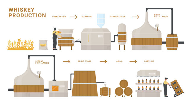 Whiskey production infographic process vector illustration. Cartoon flat info education poster of fermentation, distillation, aging and bottling alcohol whiskey drink bottle product isolated on white