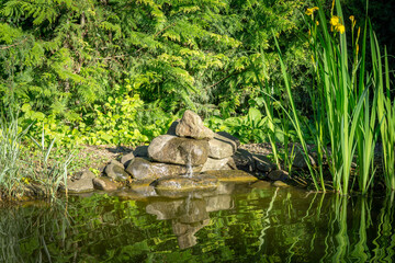 Beautiful view of the sunny garden pond with green high irises reflected in water. Large stones with small waterfall. There is a place for text. Selective focus.