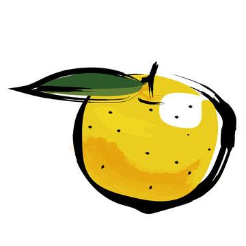 アナログタッチ筆描き水彩画 ゆず柚子のイラスト果物フルーツ Yuzu illustration
