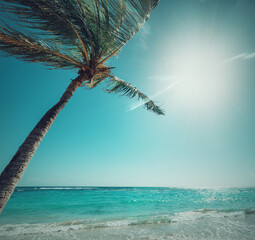 Sun shining over Raisins Clairs beach in Guadeloupe