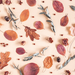 Autumn composition. Pattern made of dried leaves, flowers, acorns on beige background. Autumn, fall concept. Flat lay, top view