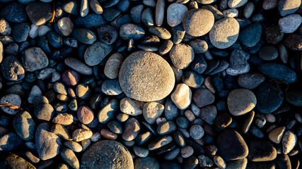Fotobehang Brandhout textuur Pacific Northwest Pebble Beach Detail