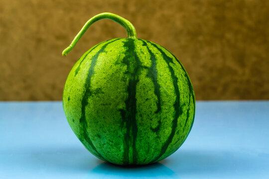 Big whole striped watermelon on blue