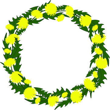 A wreath of spring yellow dandelions