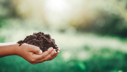 Hands of a child taking care of a seedling in the soil