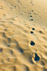 Footprints in dry sand