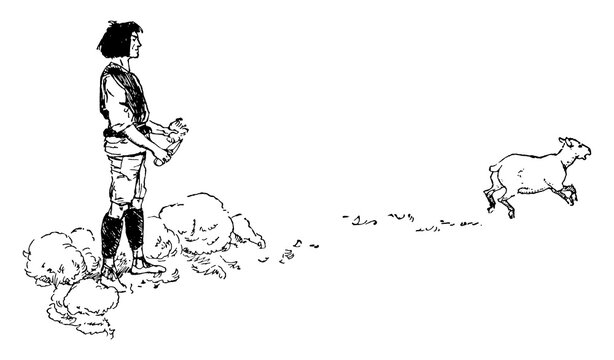 Sheep shearing, vintage illustration