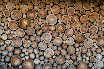 Fotobehang Brandhout textuur catasta legna texture