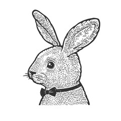 Rabbit in bow tie sketch engraving vector illustration. T-shirt apparel print design. Scratch board imitation. Black and white hand drawn image.