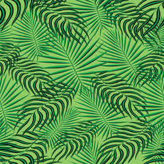 Tropical palm leaves pattern seamless background. Exotic floral fashion foliage art pattern. Seamless beautiful botany palm tree summer decoration design. Print pattern for textile swimwear. Vector.