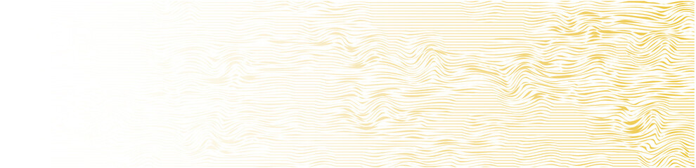 abstract vector background banner with gold lines Wall mural